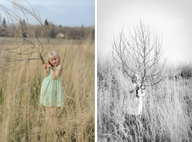 tumbleweeds field photos